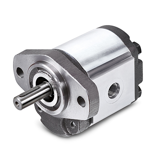 1G Series Cast Iron Gear Pumps
