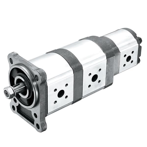 21D/21T Series Multiple Pumps