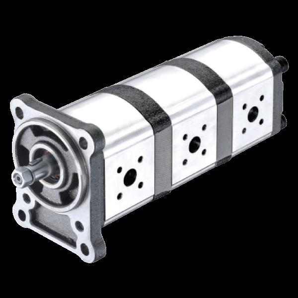 2D/2T Series Multiple Pumps