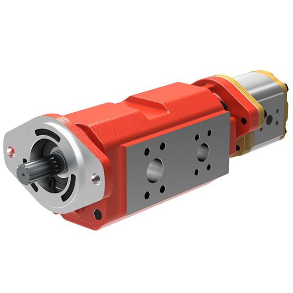 43D/43T Series Multiple Pumps