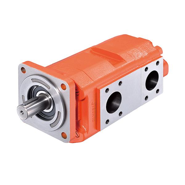 4D/4T Series Multiple Pumps