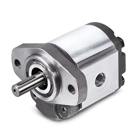1G Series Cast Iron Gear Pumps